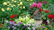 Flowers and Gardens HQ wallpapers Collection 2 05ea4e108363390
