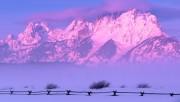Beautiful Nature Wallpapers - Part 2 8e8ecd108362498